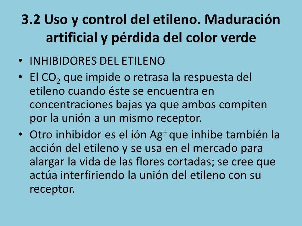 3.2 Uso y control del etileno. Maduración artificial y pérdida del color verde INHIBIDORES DEL ETILENO El CO 2 que impide o retrasa la respuesta del e