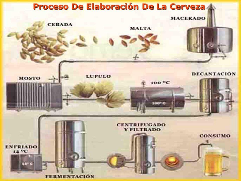 Proceso De Elaboración De La Cerveza