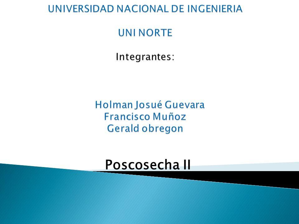 Poscosecha II