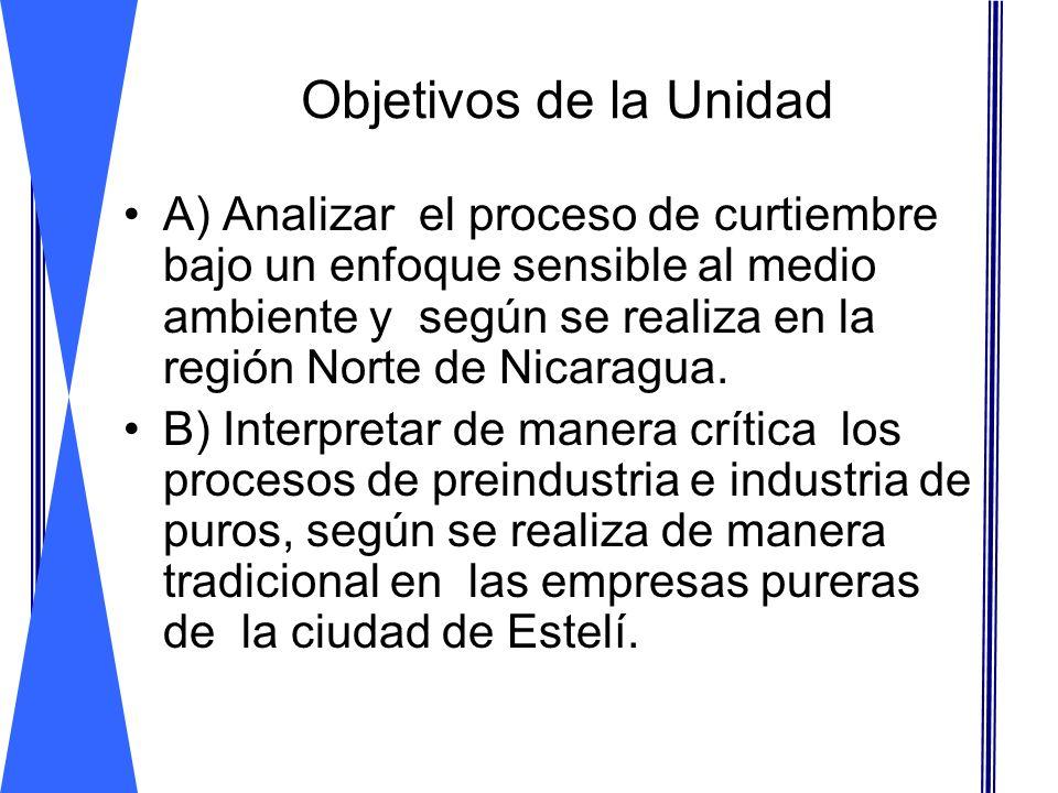 Objetivos de la Unidad A) Analizar el proceso de curtiembre bajo un enfoque sensible al medio ambiente y según se realiza en la región Norte de Nicara