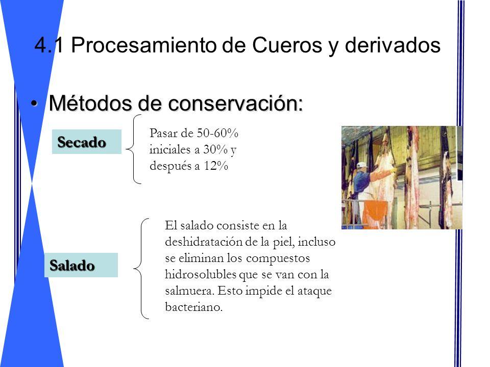 Métodos de conservación:Métodos de conservación: 4.1 Procesamiento de Cueros y derivados Salado Secado Pasar de 50-60% iniciales a 30% y después a 12%