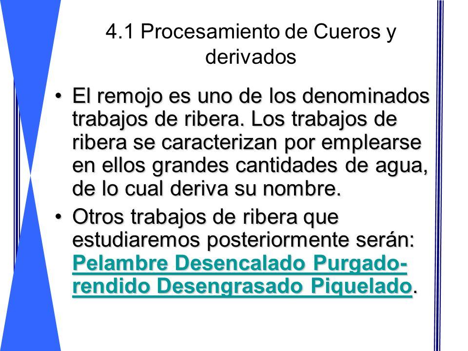 4.1 Procesamiento de Cueros y derivados El remojo es uno de los denominados trabajos de ribera. Los trabajos de ribera se caracterizan por emplearse e