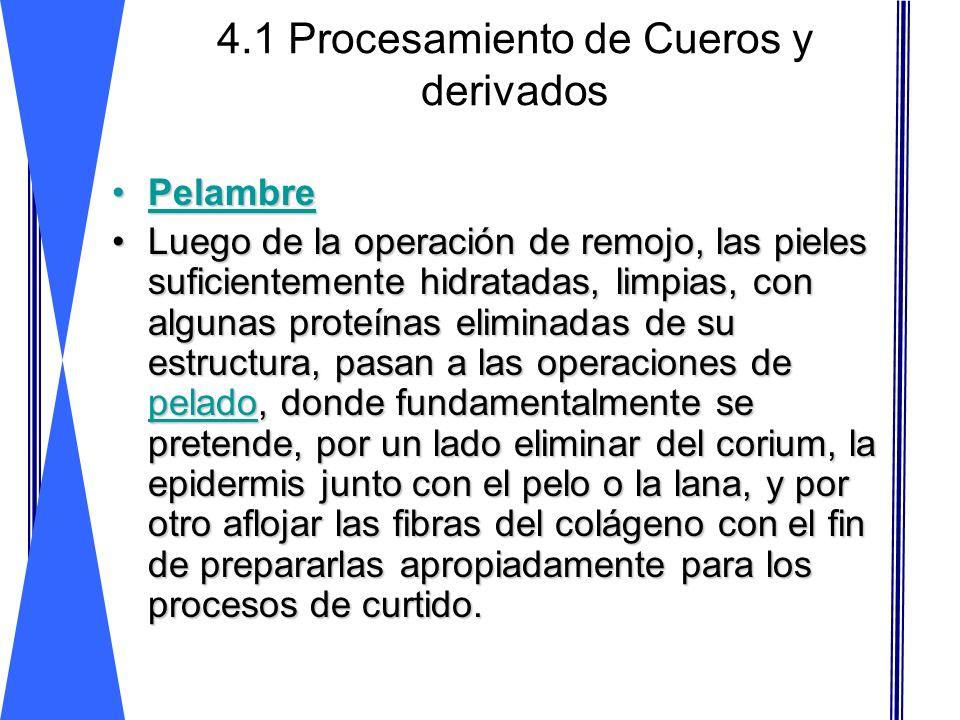 4.1 Procesamiento de Cueros y derivados PelambrePelambre Luego de la operación de remojo, las pieles suficientemente hidratadas, limpias, con algunas