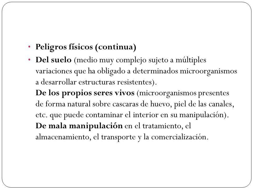 Peligros físicos (continua) Del suelo (medio muy complejo sujeto a múltiples variaciones que ha obligado a determinados microorganismos a desarrollar estructuras resistentes).