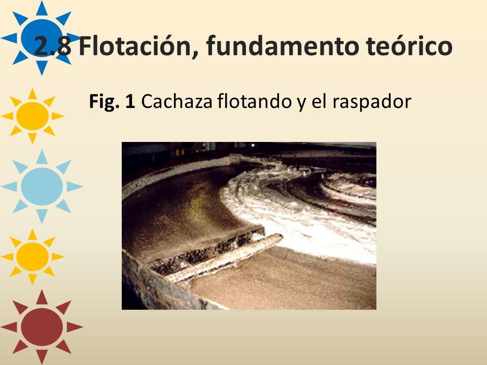 Fig. 1 Cachaza flotando y el raspador