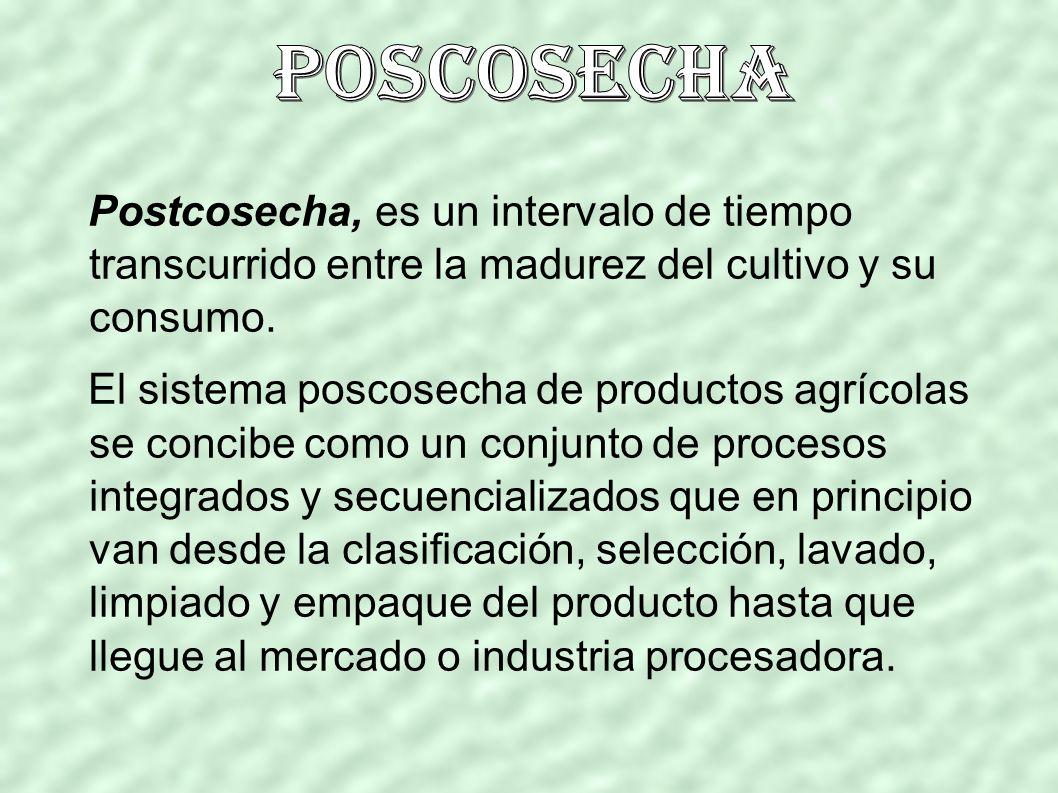 Postcosecha, es un intervalo de tiempo transcurrido entre la madurez del cultivo y su consumo.