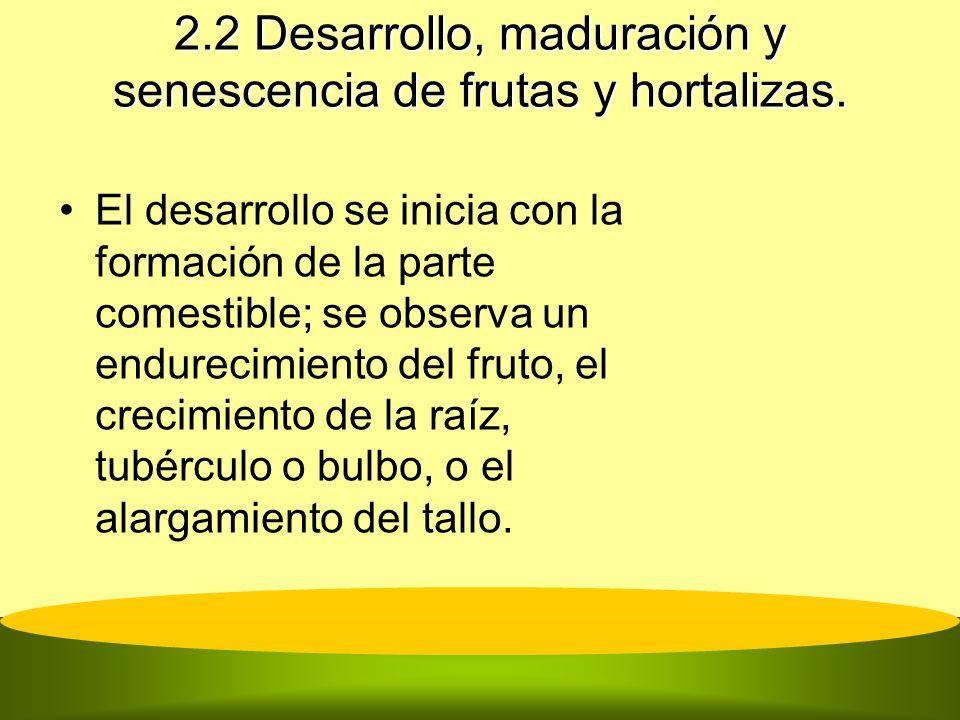 2.2 Desarrollo, maduración y senescencia de frutas y hortalizas. El desarrollo se inicia con la formación de la parte comestible; se observa un endure