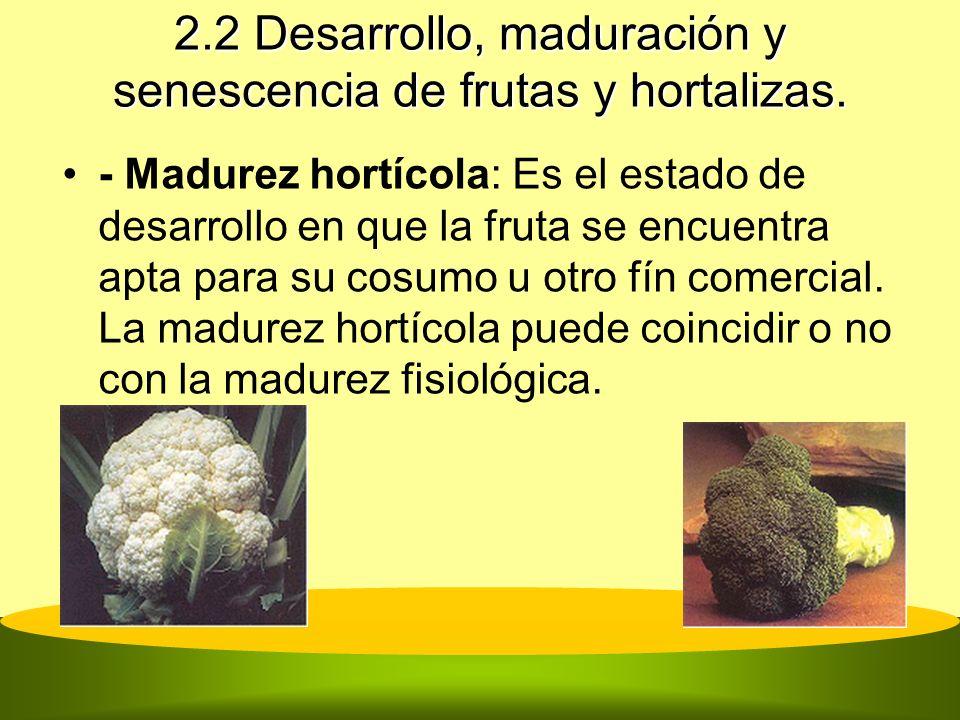 2.2 Desarrollo, maduración y senescencia de frutas y hortalizas. - Madurez hortícola: Es el estado de desarrollo en que la fruta se encuentra apta par