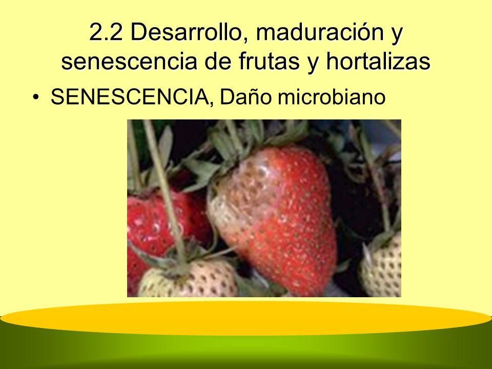 2.2 Desarrollo, maduración y senescencia de frutas y hortalizas SENESCENCIA, Daño microbiano