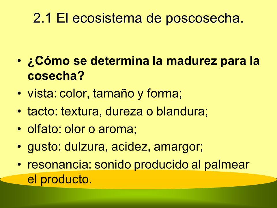 2.1 El ecosistema de poscosecha. ¿Cómo se determina la madurez para la cosecha? vista: color, tamaño y forma; tacto: textura, dureza o blandura; olfat