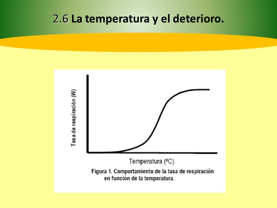 En cítricos la degradación de la clorofila es óptima a 22ºC, por el contrario a 38 ºC la misma se detiene.