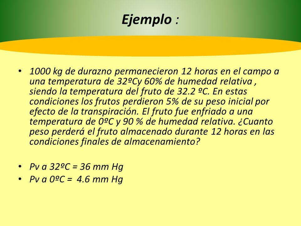 Contínua… DPVpulpa = (100- 60) x 36mm = 14,4 mm H 2 O 100 DPVenfriamiento : (100-90) x 4.6 mm= 0.46 mm H 2 O 100 5% pérdida de peso inicial (1000 kg): 50 Kg 50Kg _____ 14.40 mm H 2 O X _____ 0,46 mm H 2 O X =1,597 Kg /12 horas 50,000 Kg _____ 5% de pérdida de peso 1,597 Kg ______ X X = 0.15 9 % perdida de peso durante 12 horas.