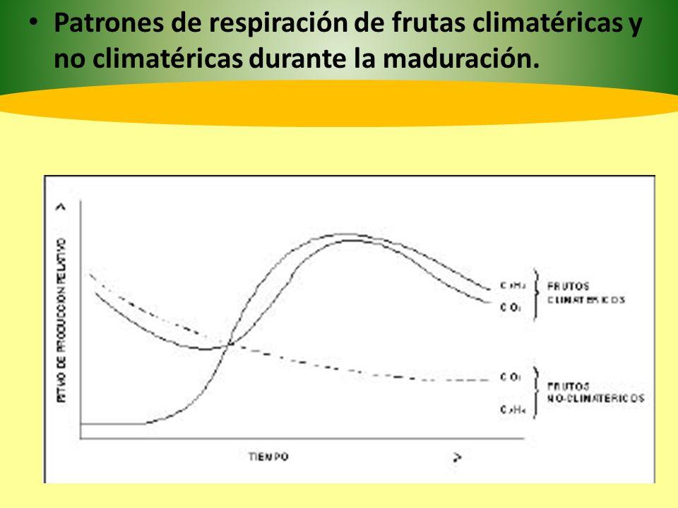 2.5 Frutos climatéricos y no climatéricos.