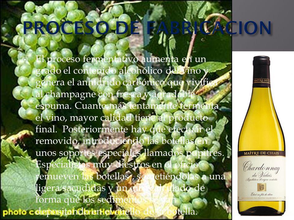 El proceso fermentativo aumenta en un grado el contenido alcohólico del vino y genera el anhídrido carbónico que vivifica al champagne con fresca y ag
