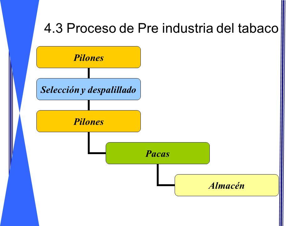 4.3 Proceso de Pre industria del tabaco Pilones Selección y despalillado Pilones Pacas Almacén