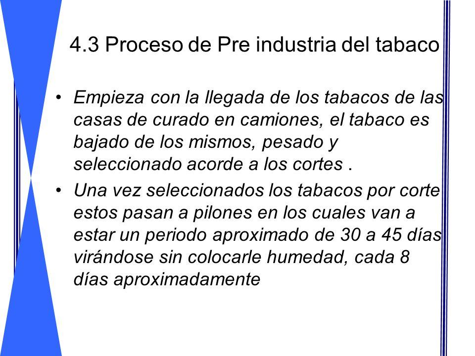 4.3 Proceso de Pre industria del tabaco Empieza con la llegada de los tabacos de las casas de curado en camiones, el tabaco es bajado de los mismos, p