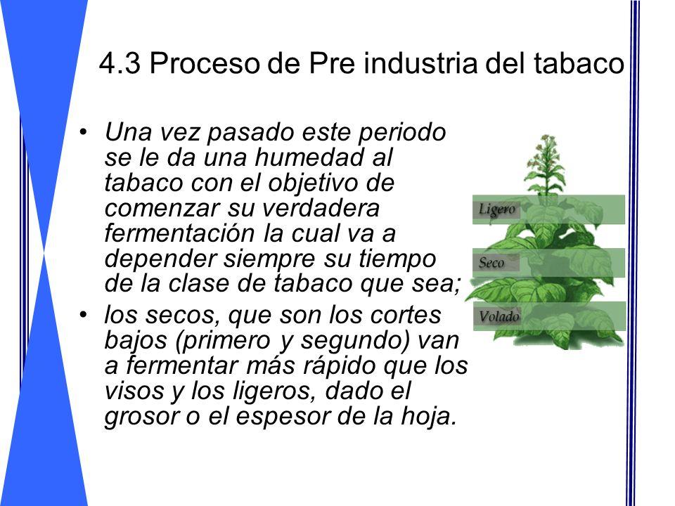 4.3 Proceso de Pre industria del tabaco Una vez pasado este periodo se le da una humedad al tabaco con el objetivo de comenzar su verdadera fermentaci