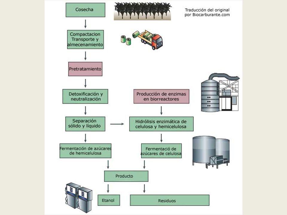 4.4Proceso de elaboración de solventes orgánicos a partir de material celulósico Obtención de metanol: Este proceso consiste en destilar la madera en ausencia de aire a unos 400 °C formándose gases combustibles (CO, C2H4, H 2 ), empleados en el calentamiento de las retortas; un destilado acuoso que se conoce como ácido piroleñoso y que contiene un 7-9% de ácido acético, 2- 3% de metanol y un 0.5% de acetona; un alquitrán de madera, base para la preparación de antisépticos y desinfectantes; y carbón vegetal que queda como residuo en las retortas.
