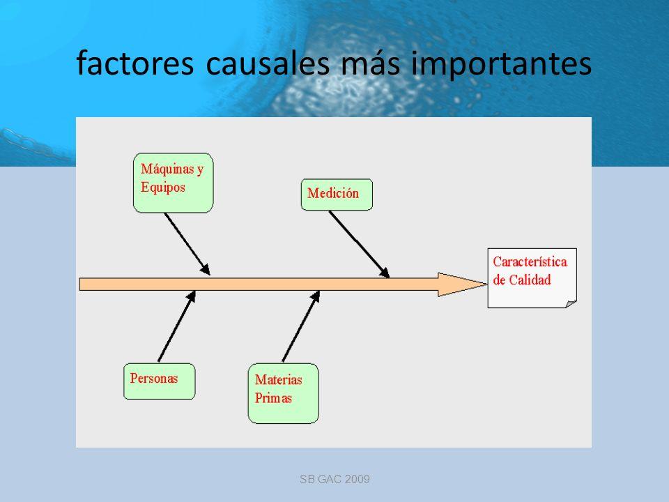 factores causales más importantes SB GAC 2009
