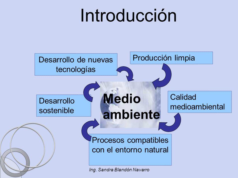 Ing. Sandra Blandón Navarro Introducción Desarrollo sostenible Procesos compatibles con el entorno natural Desarrollo de nuevas tecnologías Producción