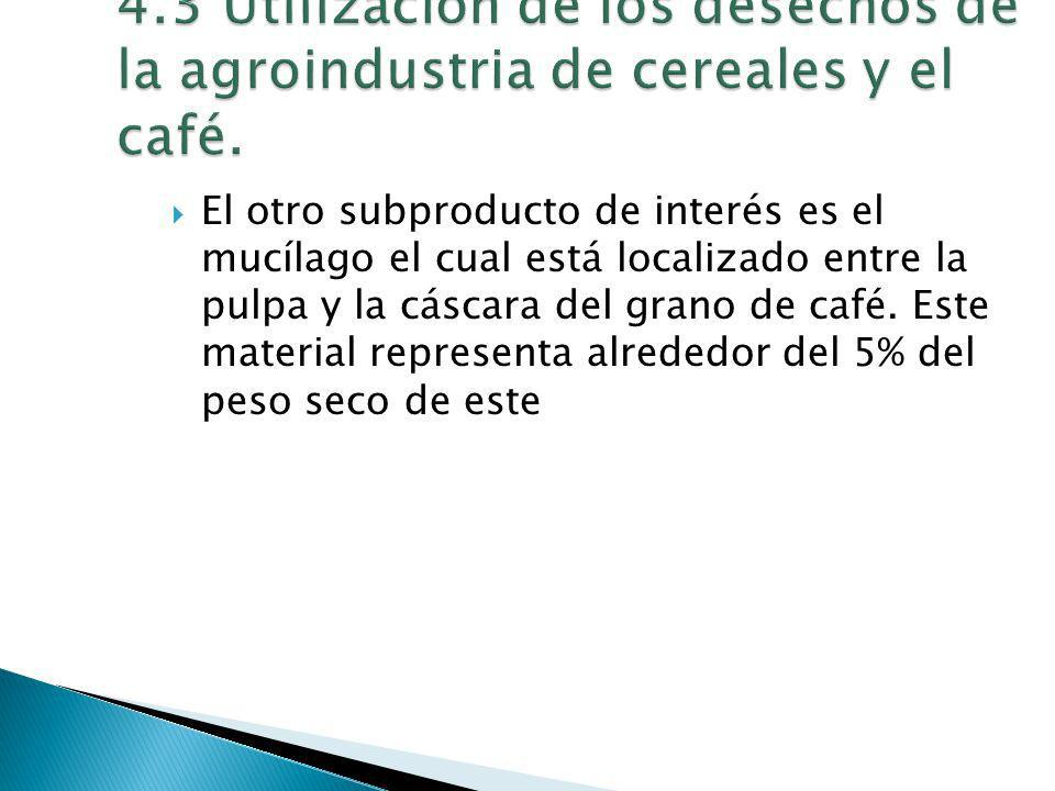 El otro subproducto de interés es el mucílago el cual está localizado entre la pulpa y la cáscara del grano de café. Este material representa alrededo