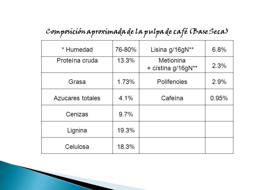 Composición aproximada de la pulpa de café (Base Seca) * Humedad76-80%Lisina g/16gN**6.8% Proteína cruda13.3%Metionina + cístina g/16gN** 2.3% Grasa1.