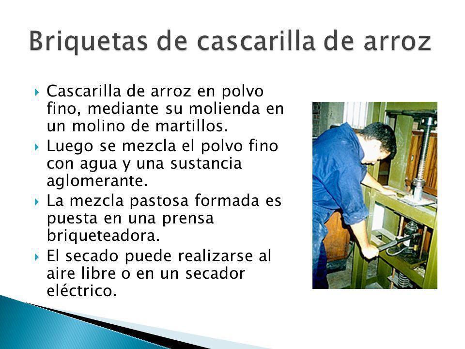 La cáscara o cascarilla de soja es un subproducto del procesamiento industrial del grano de soja para la producción de aceite.