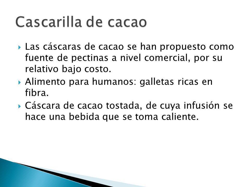 Las cáscaras de cacao se han propuesto como fuente de pectinas a nivel comercial, por su relativo bajo costo. Alimento para humanos: galletas ricas en