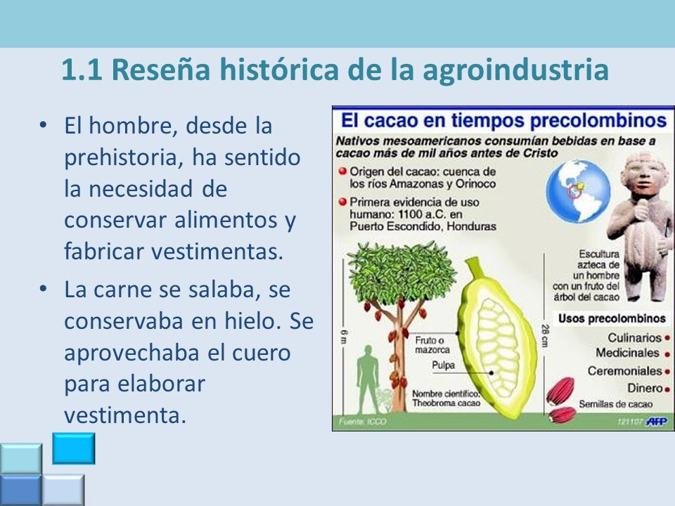 1.1 Reseña histórica de la agroindustria El hombre, desde la prehistoria, ha sentido la necesidad de conservar alimentos y fabricar vestimentas. La ca