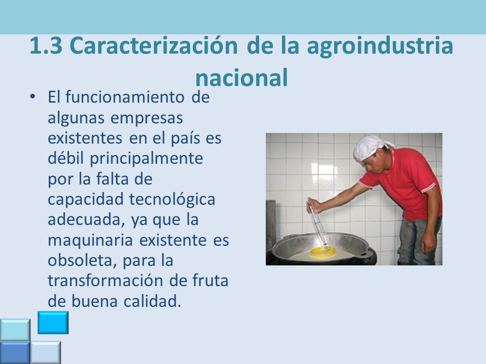 1.3 Caracterización de la agroindustria nacional El funcionamiento de algunas empresas existentes en el país es débil principalmente por la falta de c
