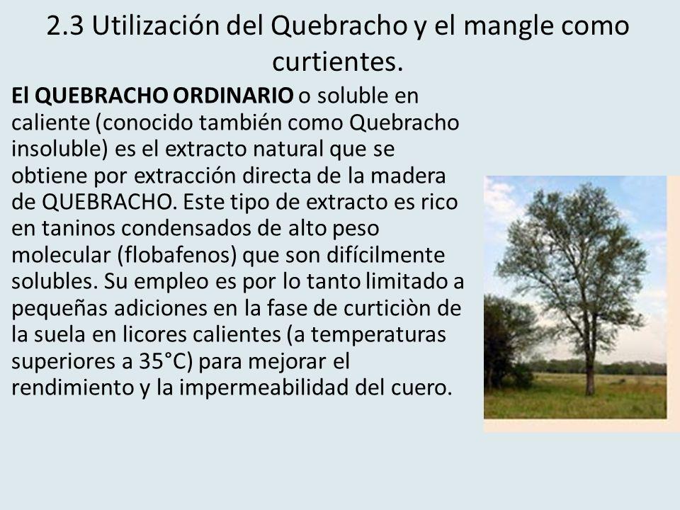 2.3 Utilización del Quebracho y el mangle como curtientes. El QUEBRACHO ORDINARIO o soluble en caliente (conocido también como Quebracho insoluble) es