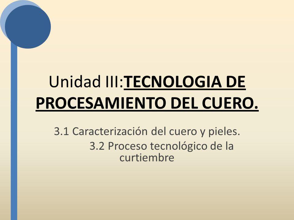 Unidad III:TECNOLOGIA DE PROCESAMIENTO DEL CUERO. 3.1 Caracterización del cuero y pieles. 3.2 Proceso tecnológico de la curtiembre