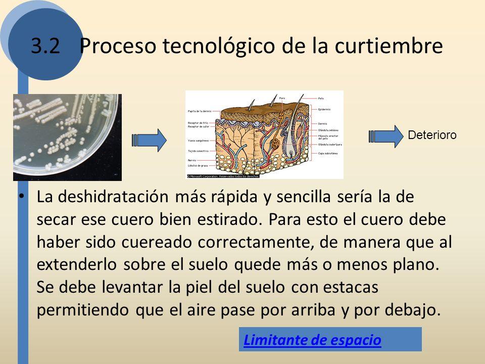 3.2Proceso tecnológico de la curtiembre La deshidratación más rápida y sencilla sería la de secar ese cuero bien estirado. Para esto el cuero debe hab