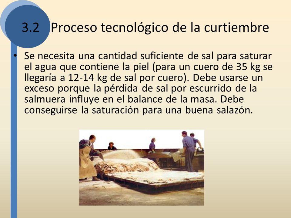 Se necesita una cantidad suficiente de sal para saturar el agua que contiene la piel (para un cuero de 35 kg se llegaría a 12-14 kg de sal por cuero).