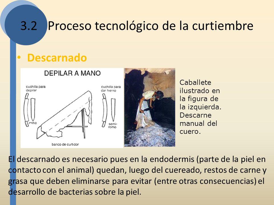 3.2Proceso tecnológico de la curtiembre Descarnado Caballete ilustrado en la figura de la izquierda. Descarne manual del cuero. El descarnado es neces