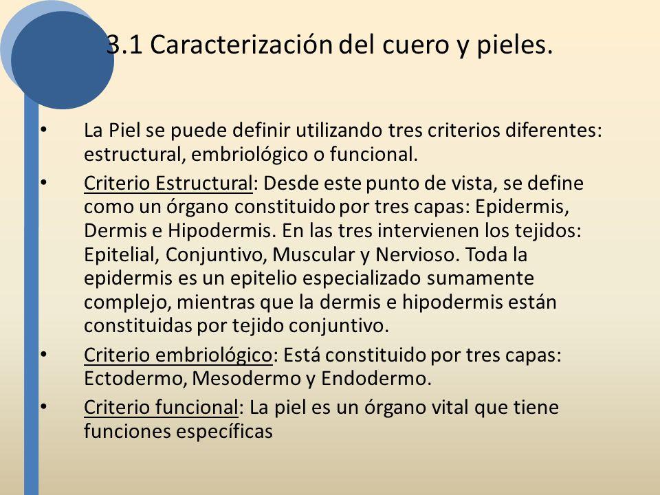 La Piel se puede definir utilizando tres criterios diferentes: estructural, embriológico o funcional. Criterio Estructural: Desde este punto de vista,