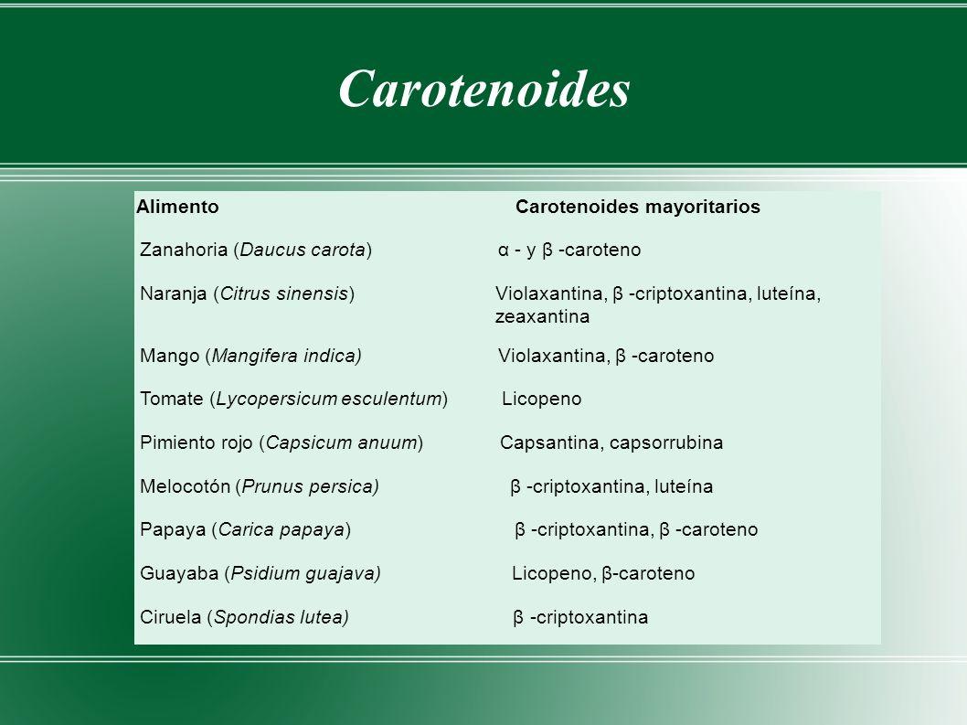 Carotenoides Alimento Carotenoides mayoritarios Zanahoria (Daucus carota) α - y β -caroteno Naranja (Citrus sinensis) Violaxantina, β -criptoxantina, luteína, zeaxantina Mango (Mangifera indica) Violaxantina, β -caroteno Tomate (Lycopersicum esculentum) Licopeno Pimiento rojo (Capsicum anuum) Capsantina, capsorrubina Melocotón (Prunus persica) β -criptoxantina, luteína Papaya (Carica papaya) β -criptoxantina, β -caroteno Guayaba (Psidium guajava) Licopeno, β-caroteno Ciruela (Spondias lutea) β -criptoxantina