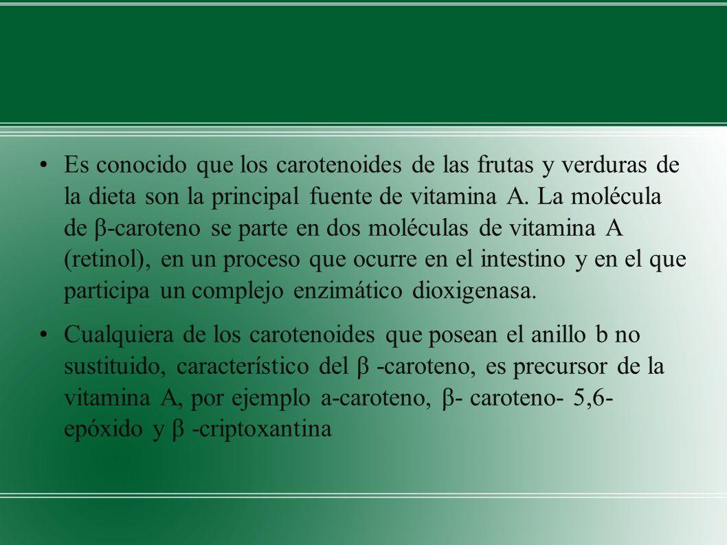 Es conocido que los carotenoides de las frutas y verduras de la dieta son la principal fuente de vitamina A.