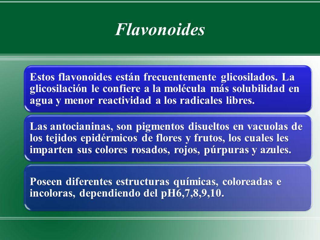 Flavonoides Estos flavonoides están frecuentemente glicosilados.