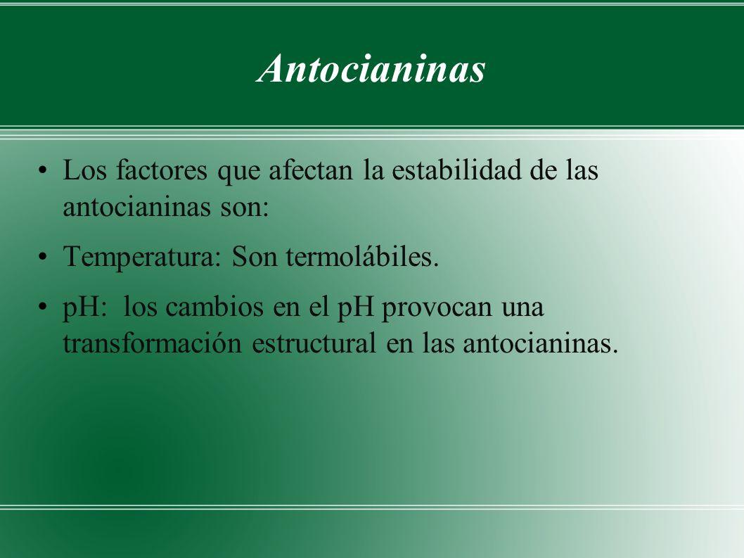 Antocianinas Los factores que afectan la estabilidad de las antocianinas son: Temperatura: Son termolábiles.