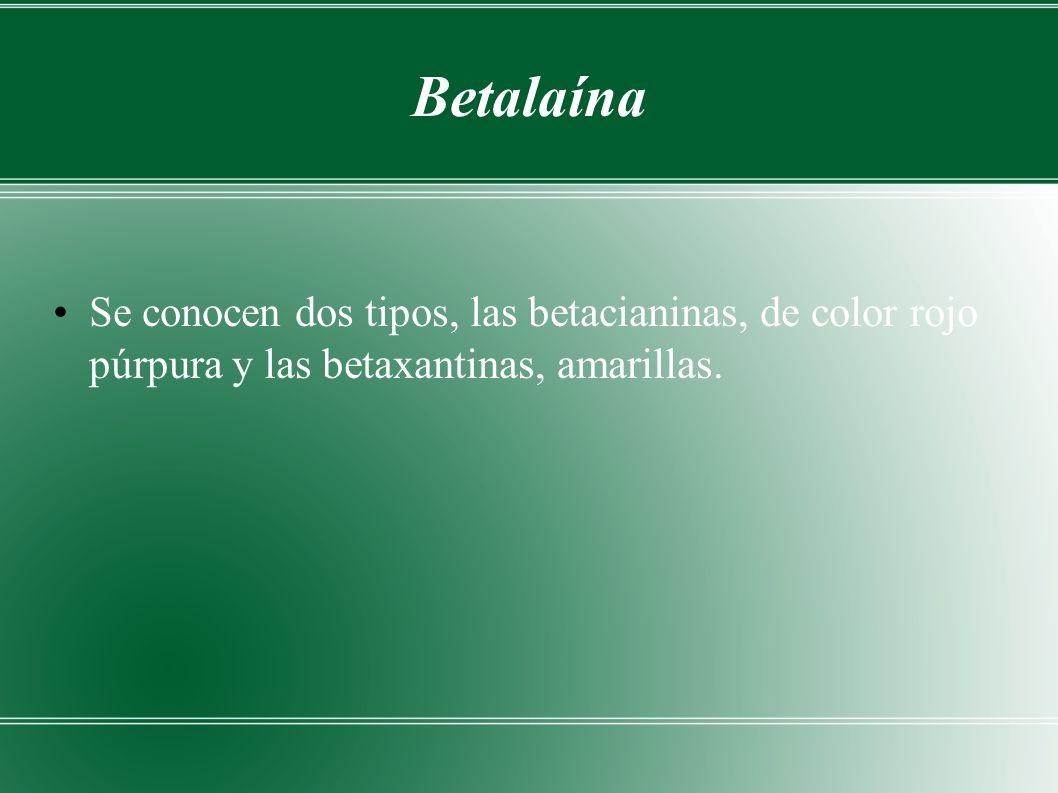 Betalaína Se conocen dos tipos, las betacianinas, de color rojo púrpura y las betaxantinas, amarillas.