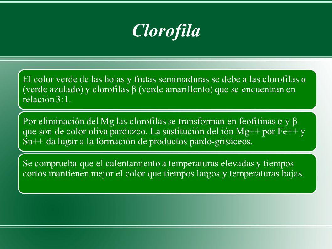 Clorofila El color verde de las hojas y frutas semimaduras se debe a las clorofilas α (verde azulado) y clorofilas β (verde amarillento) que se encuentran en relación 3:1.