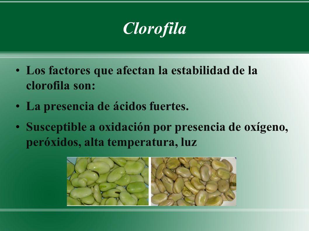 Clorofila Los factores que afectan la estabilidad de la clorofila son: La presencia de ácidos fuertes.