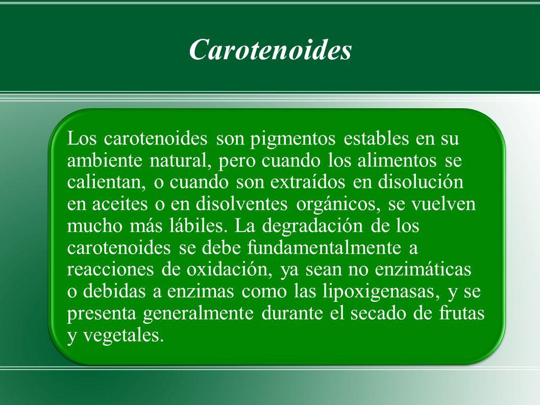 Carotenoides Los carotenoides son pigmentos estables en su ambiente natural, pero cuando los alimentos se calientan, o cuando son extraídos en disolución en aceites o en disolventes orgánicos, se vuelven mucho más lábiles.