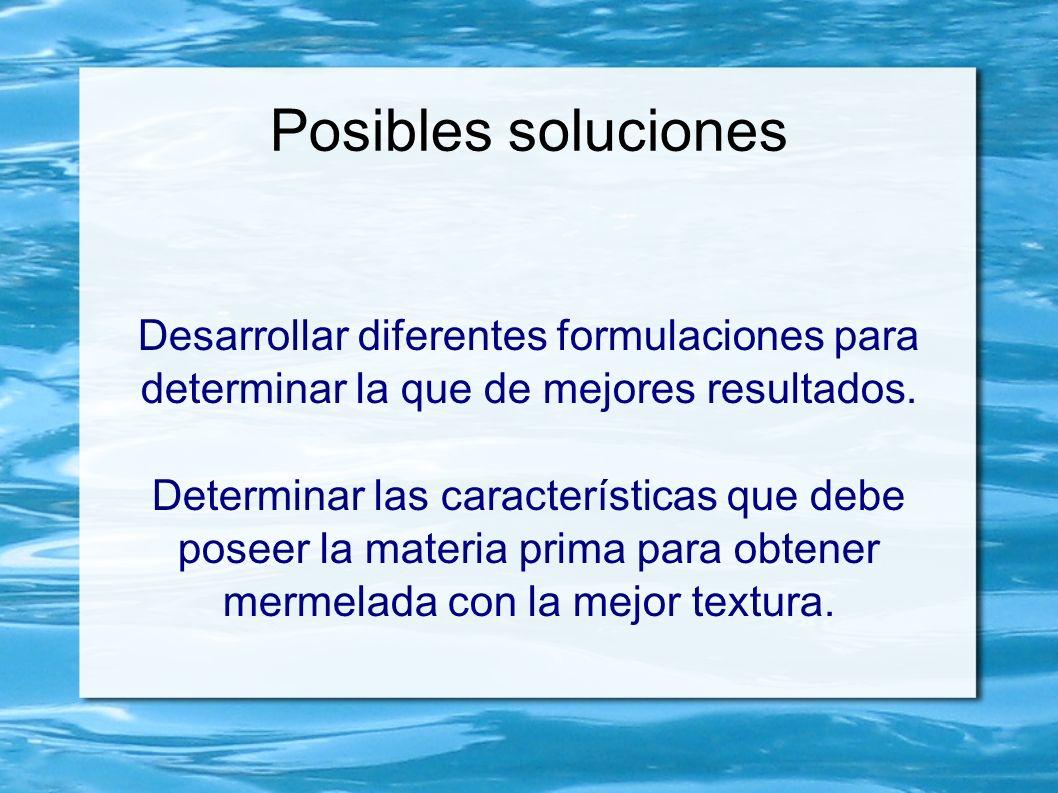 Posibles soluciones Desarrollar diferentes formulaciones para determinar la que de mejores resultados. Determinar las características que debe poseer