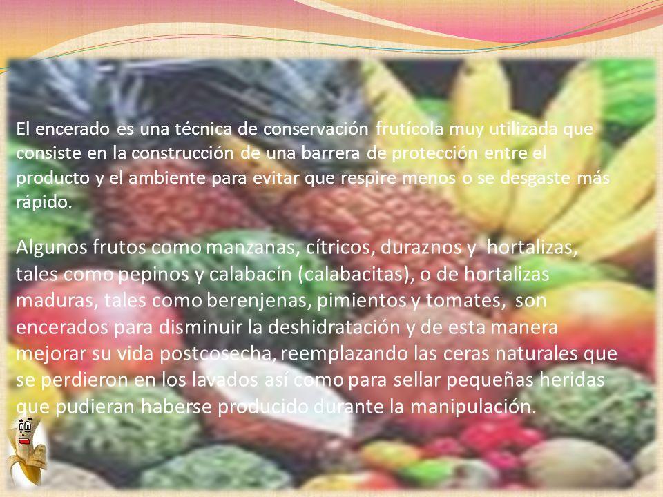 El encerado es una técnica de conservación frutícola muy utilizada que consiste en la construcción de una barrera de protección entre el producto y el