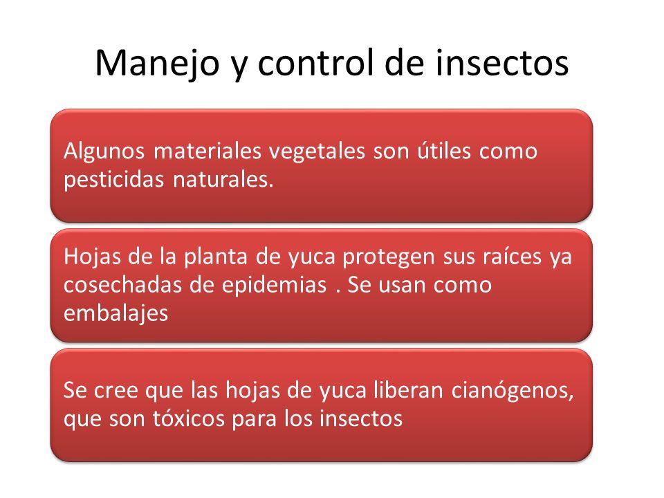 Manejo y control de insectos Algunos materiales vegetales son útiles como pesticidas naturales. Hojas de la planta de yuca protegen sus raíces ya cose
