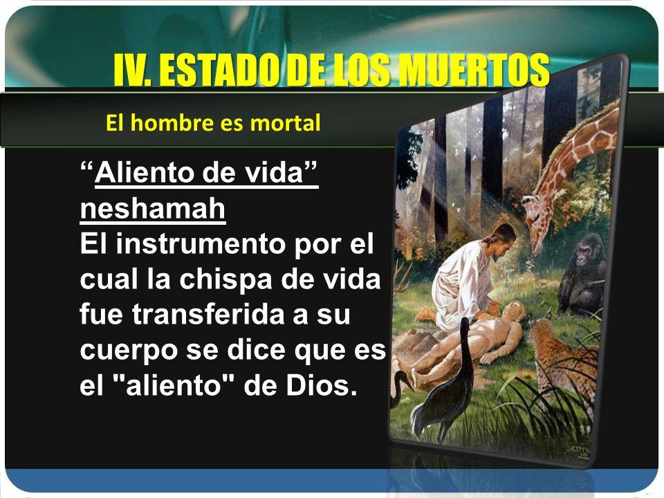 IV. ESTADO DE LOS MUERTOS Aliento de vida neshamah El instrumento por el cual la chispa de vida fue transferida a su cuerpo se dice que es el