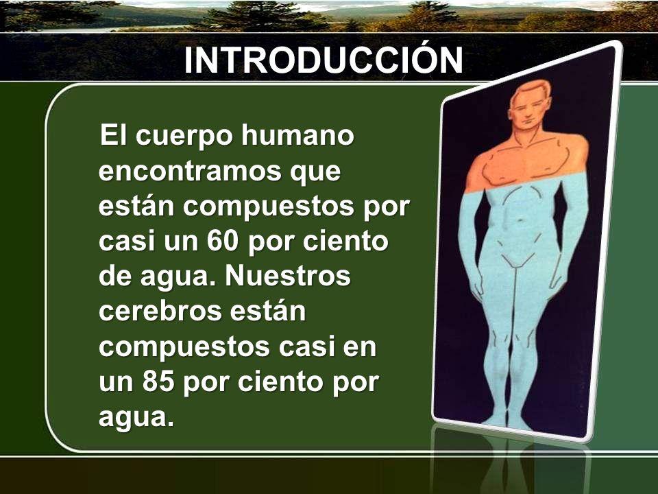 INTRODUCCIÓN El cuerpo humano encontramos que están compuestos por casi un 60 por ciento de agua. Nuestros cerebros están compuestos casi en un 85 por
