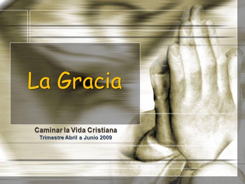 La Gracia Caminar la Vida Cristiana Trimestre Abril a Junio 2009